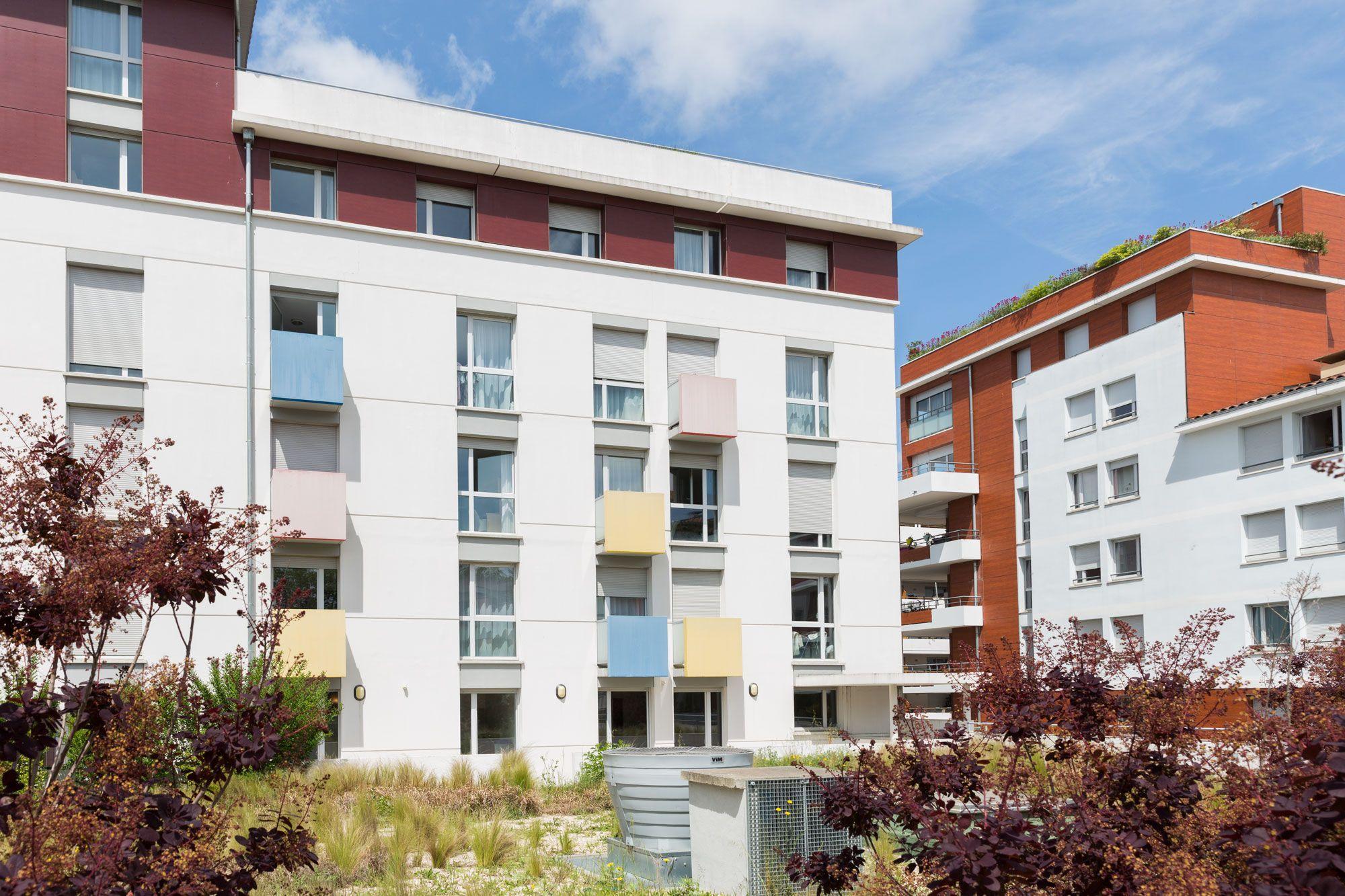Artémisia - Toulouse - Occitanes
